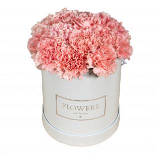 Goździki różowe w pudełku