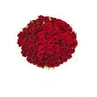 100 Róż Czerwonych