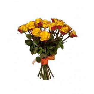15 Róż Herbacianych