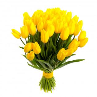 25 żółtych tulipanów
