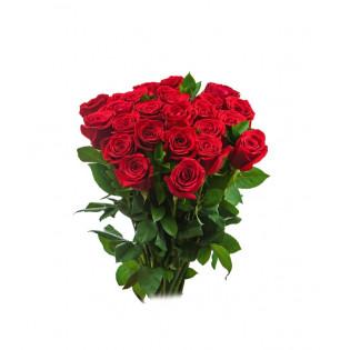25 róż