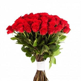 50 Róż Czerwonych